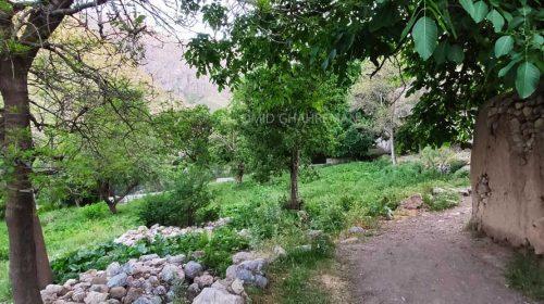 زیبایی های روستای باغچه جوق