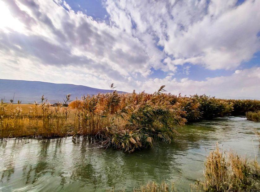 نیزار ها و رودخانه ساری سو در پشت قیه و قلعه دره سی ماکو