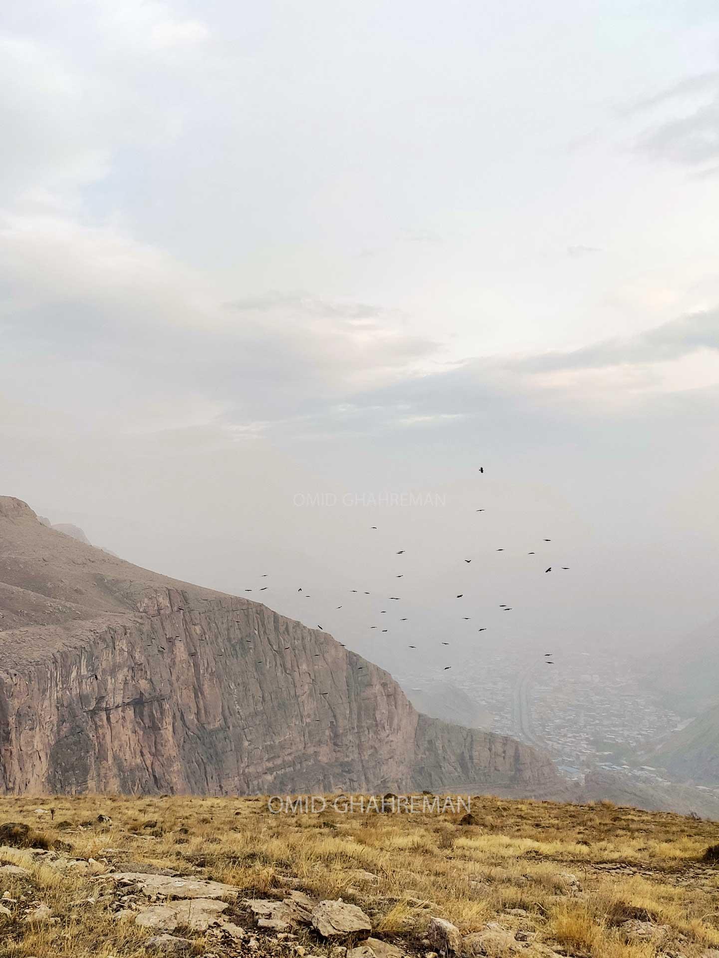 کلاغ های نوک قرمز بر فراز کلاهک سنگی قیه و فراتر از کوهها