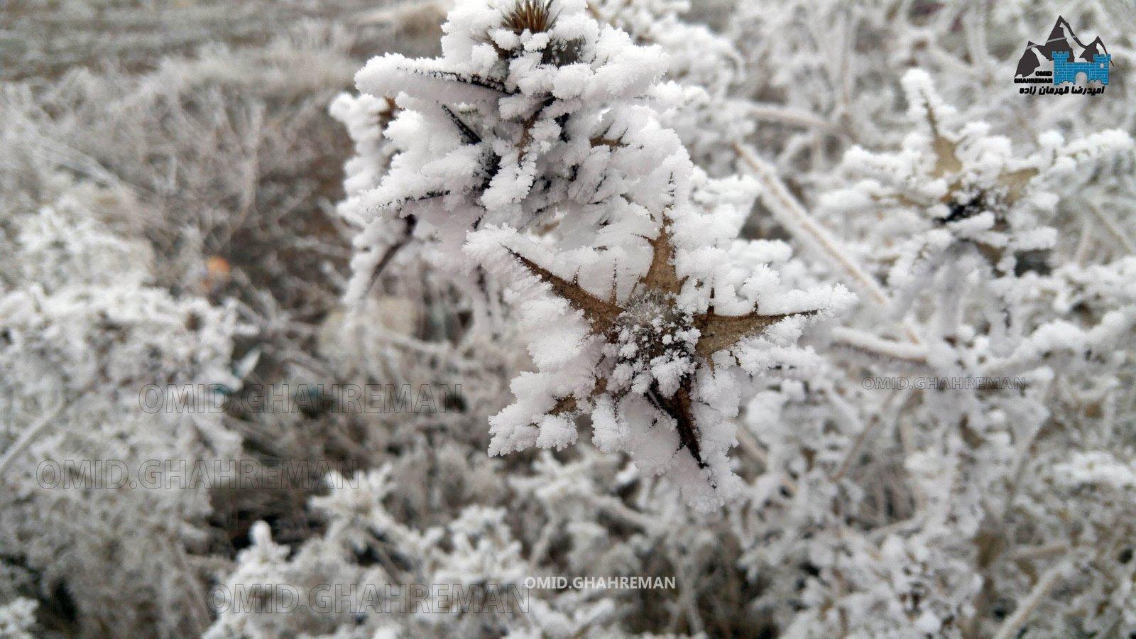 طبیعت یخ زده ماکو